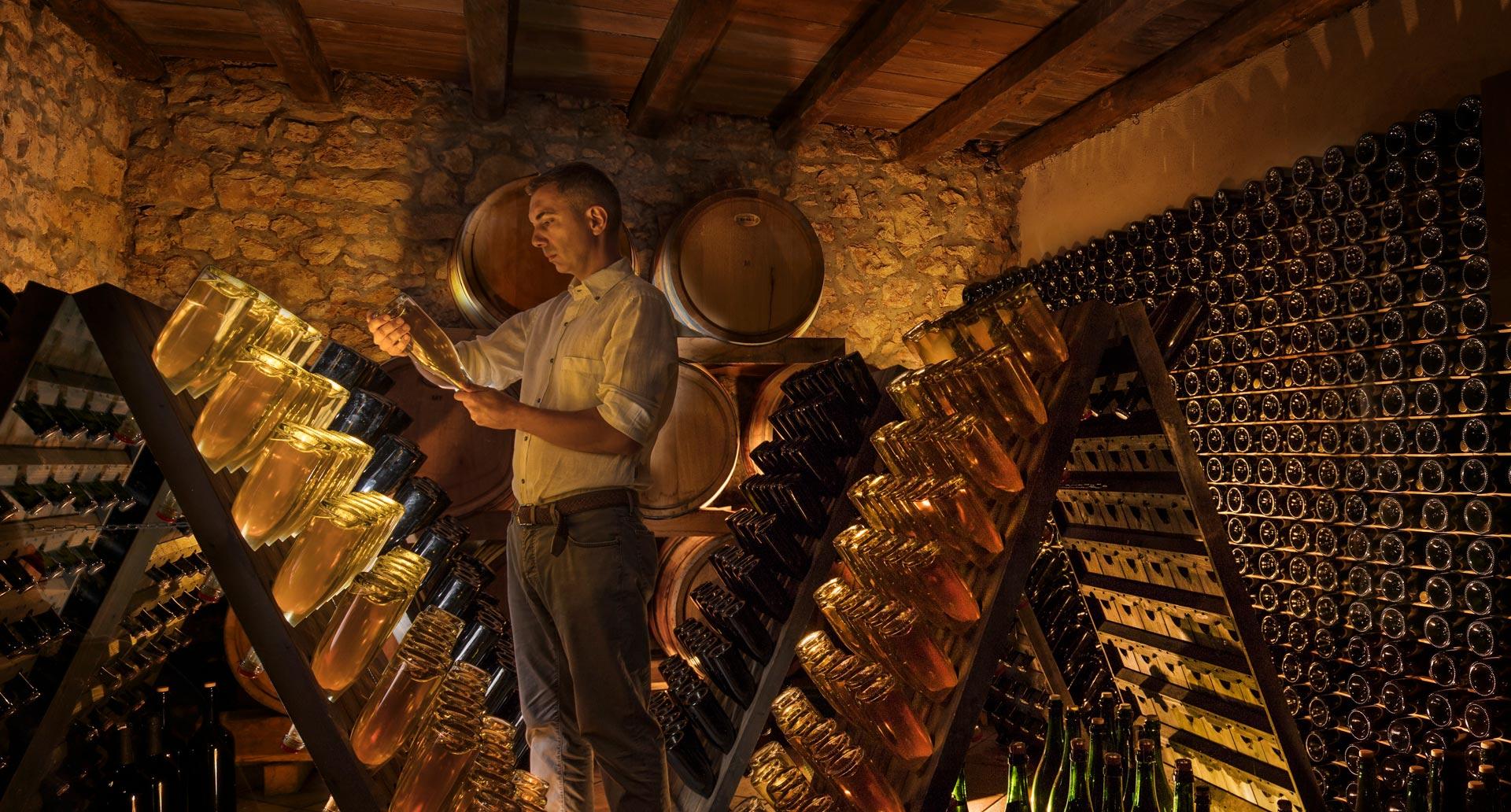 Sommelier u vinskom podrumu - lifestyle fotografija